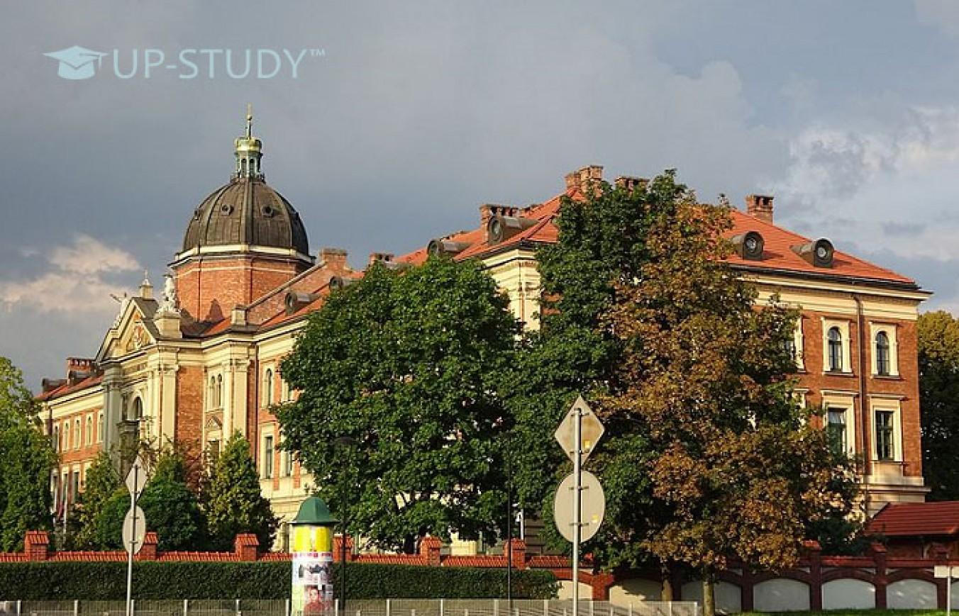 Навчання у Краківському економічному університеті. Топові спеціальності та вартість