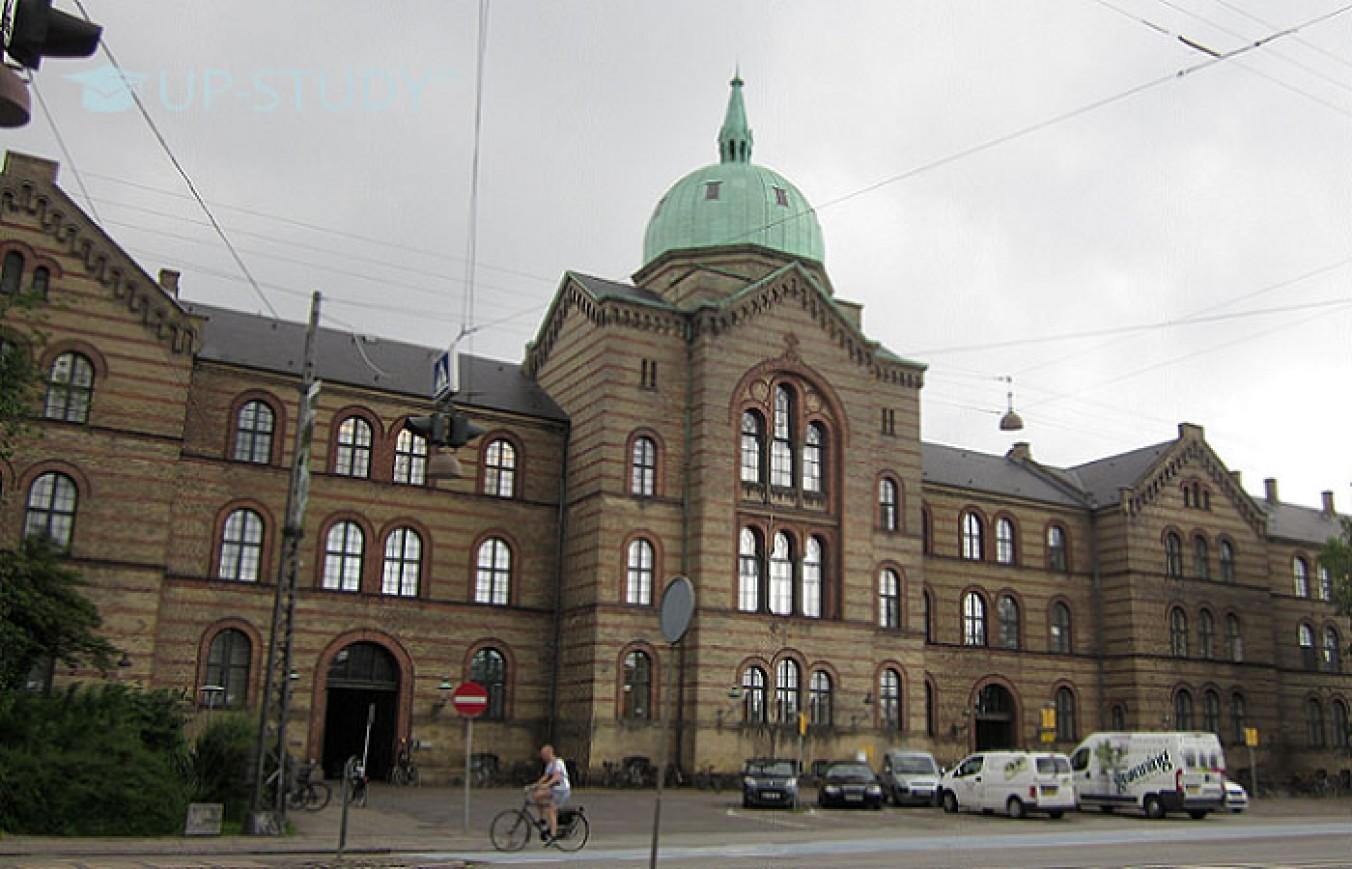 ТОП університетів світу: Університет Копенгагена (University of Copenhagen). Огляд університету