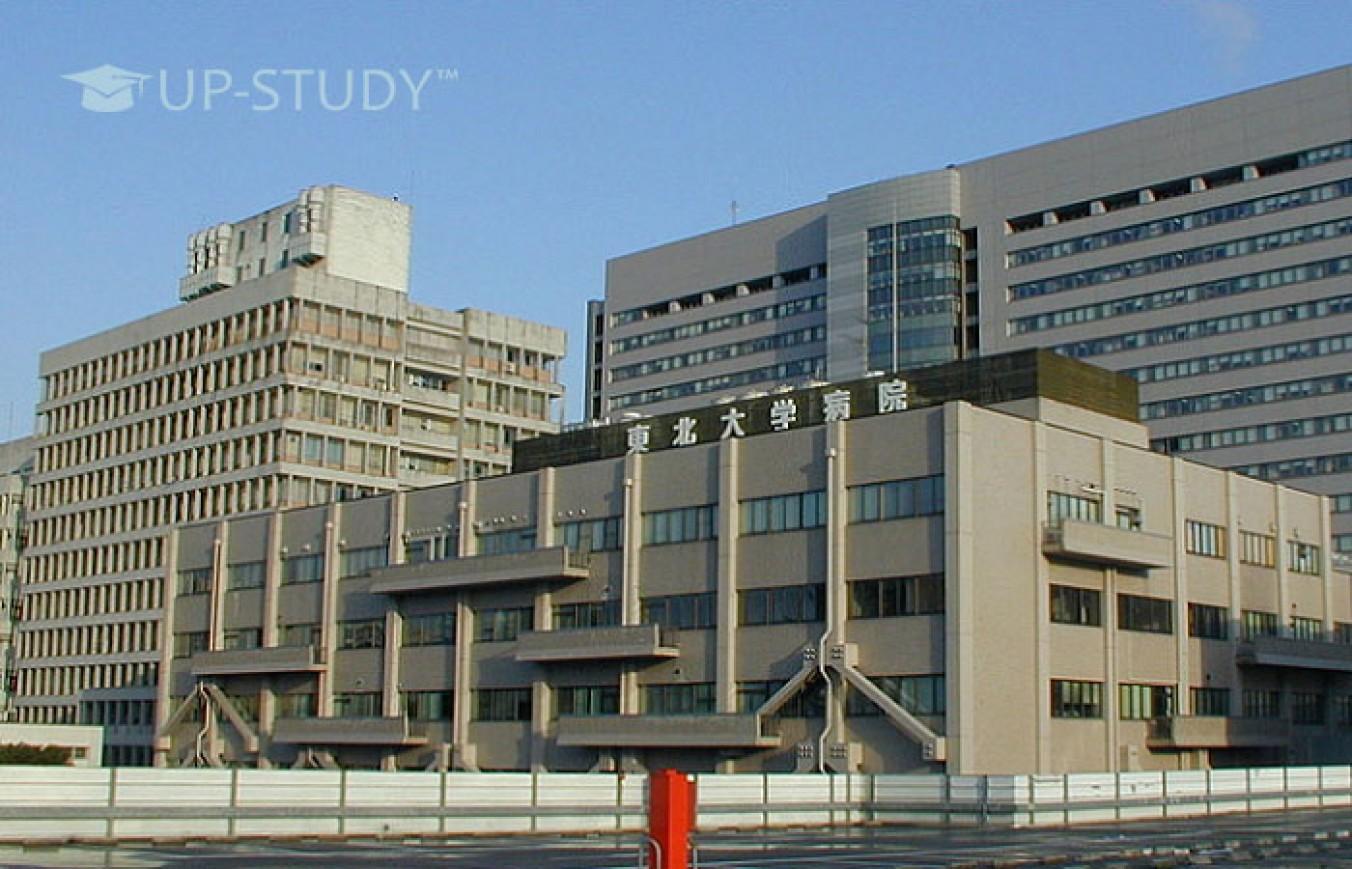 ТОП університетів світу: Університет Тохоку (Tohoku University). Огляд університету