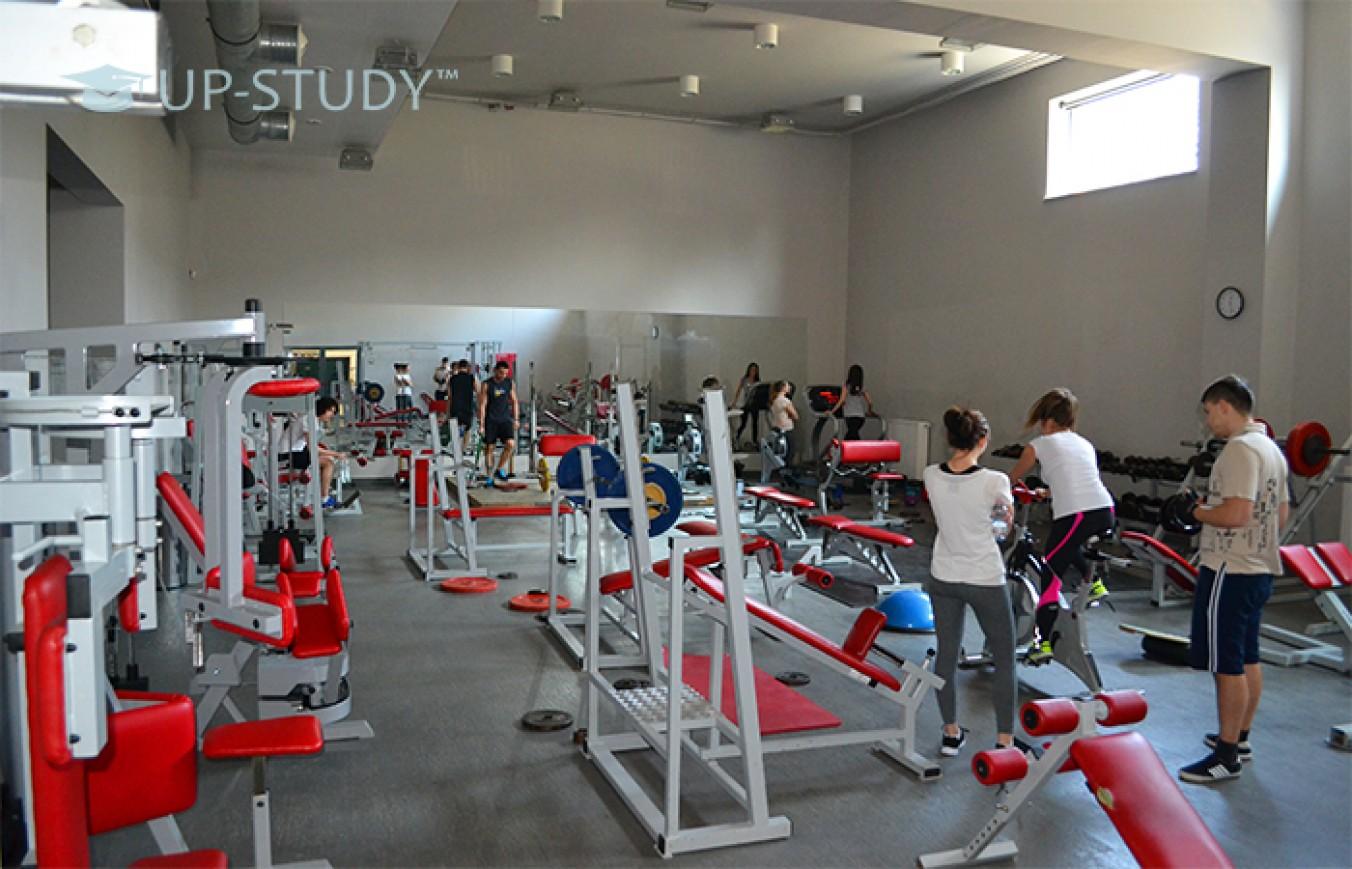 Фізичний розвиток польських студентів. Як проходять заняття спортом?