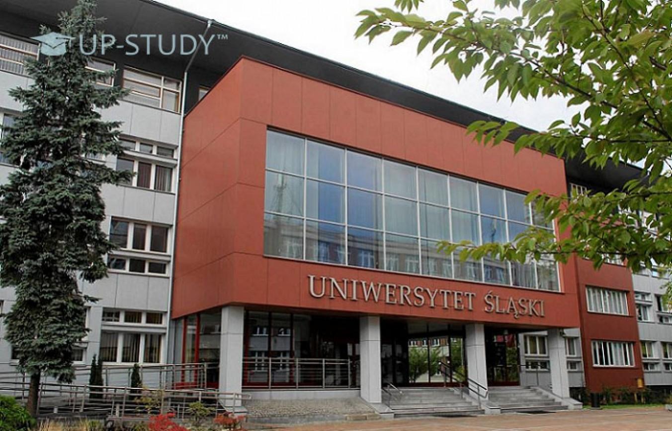Де вивчати педагогіку в Катовіце? Популярність професії на глобальному ринку праці