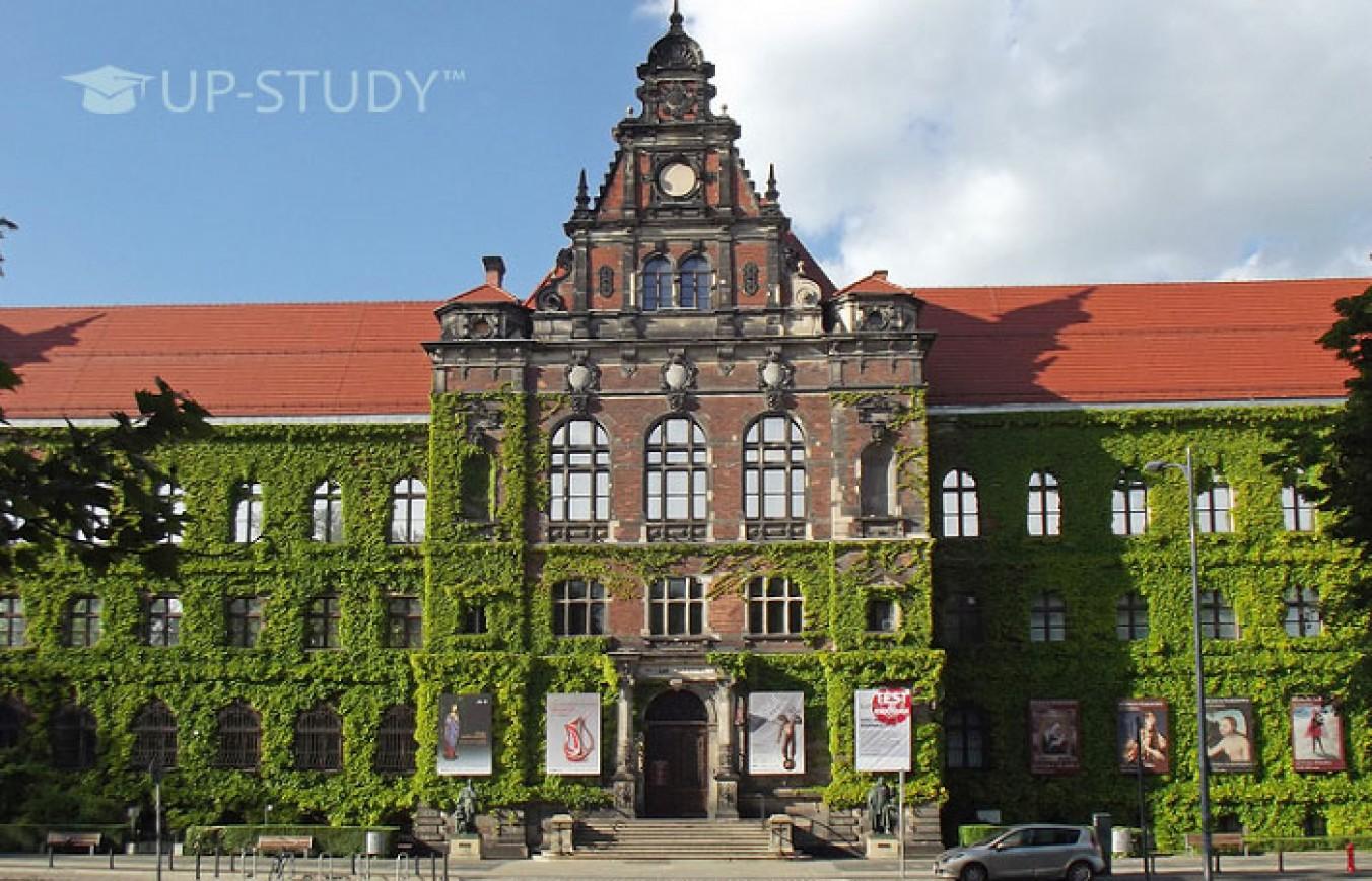 Які міста РП називають польським культурним центром? Де перспективно вчитися?